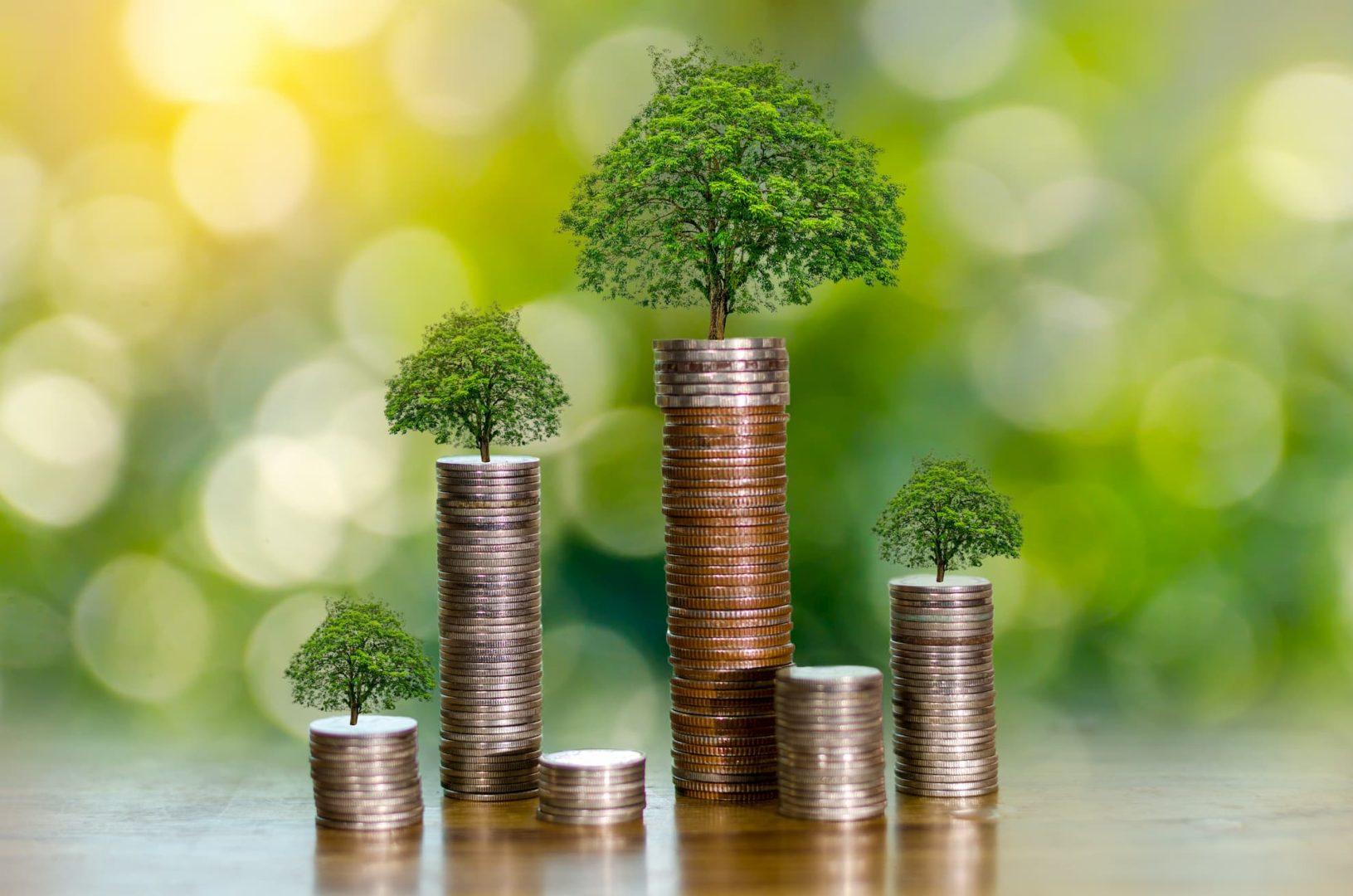 1. MODUL – Pénzügyi Alapismeretek